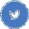Terve na Twitteru