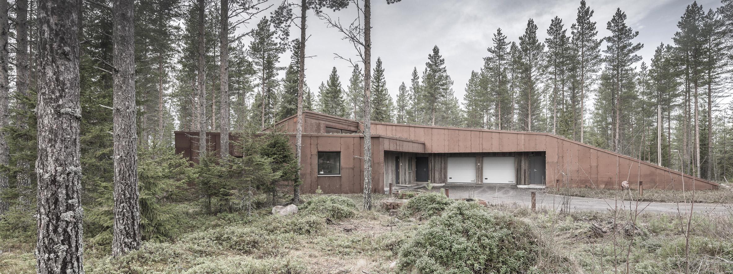 finsky-dum-v-lese-10