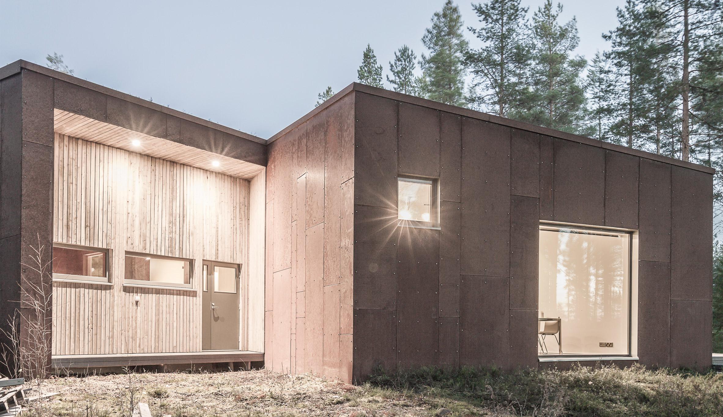 finsky-dum-v-lese-12