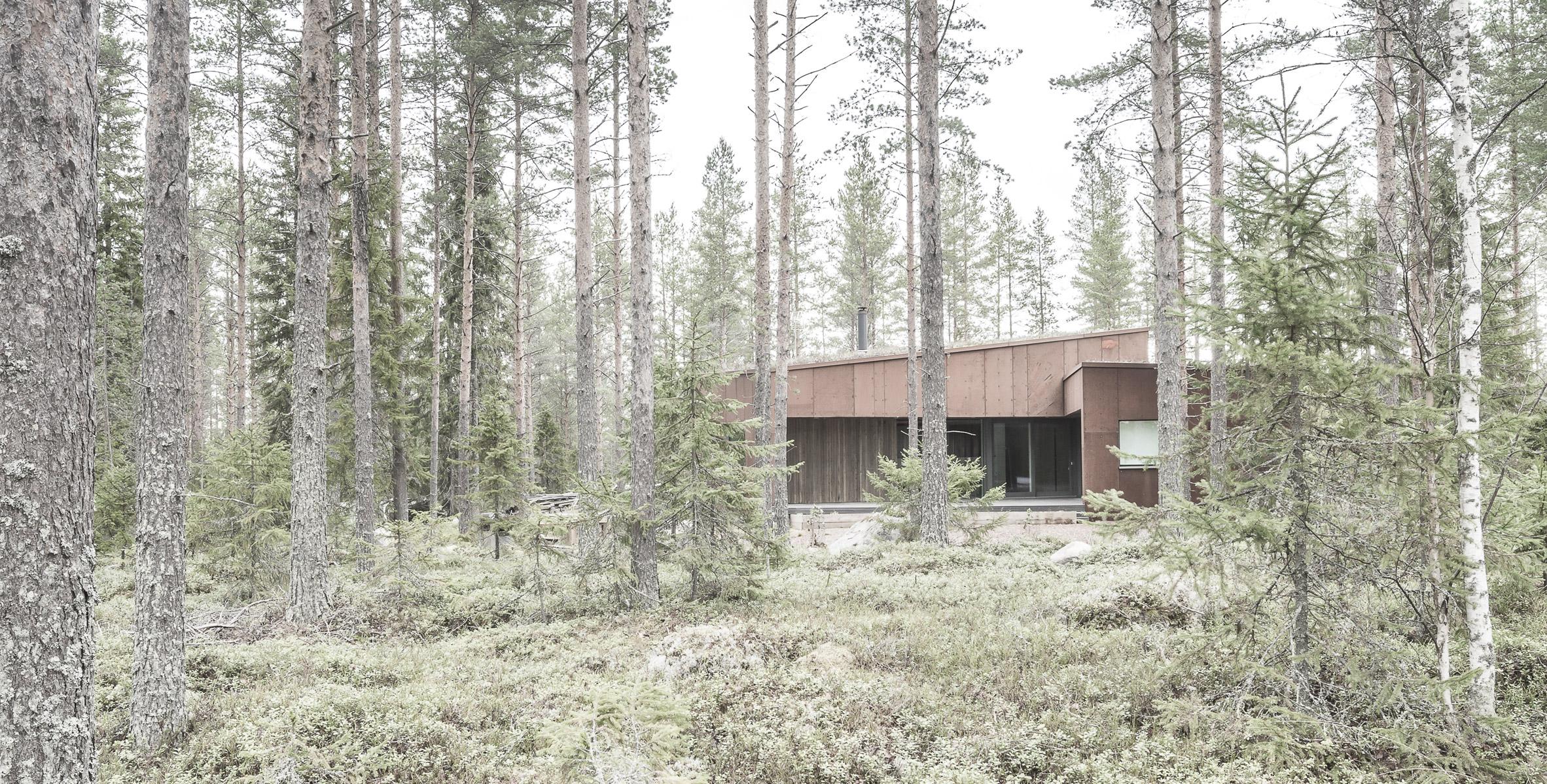 finsky-dum-v-lese-3