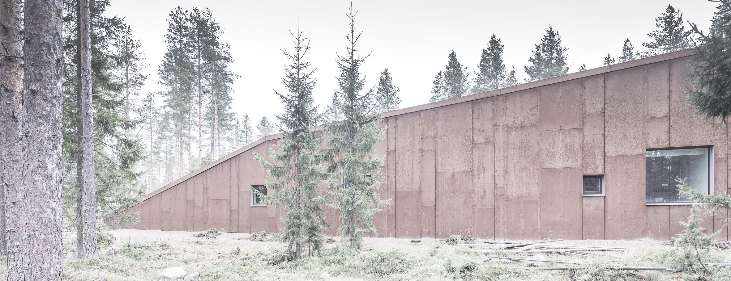finsky-dum-v-lese-8