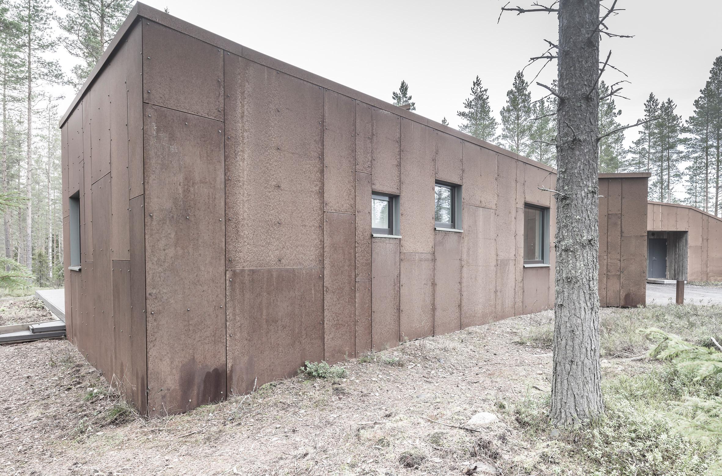 finsky-dum-v-lese-9