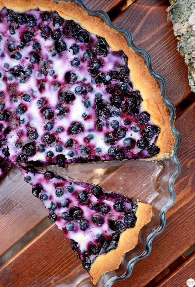 Blueberry-Pie-2-hungry-gals